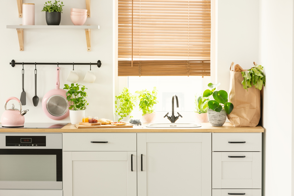 Kuchnia w stylu eko z półkami i roślinami