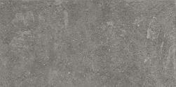 Lithops Grey Outdoor 2 cm 49,75x99,55 płytka imitująca kamień