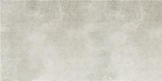 Argento Gris MT 50x100 płytki imitujące beton