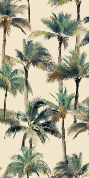 płytka ze wzorem palmy płytka na ściane 50x100