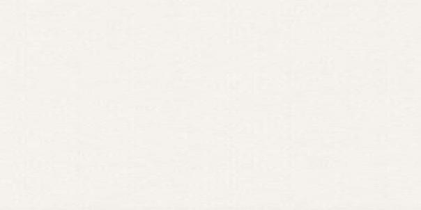 Aparici płytki na podłoge 50x100 płytki do łazienki salonu kuchni białe rektyfikowane